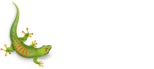Bostik Global Leadership Team